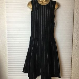 Bar lll Metallic piping Fitt & flare sweater dress